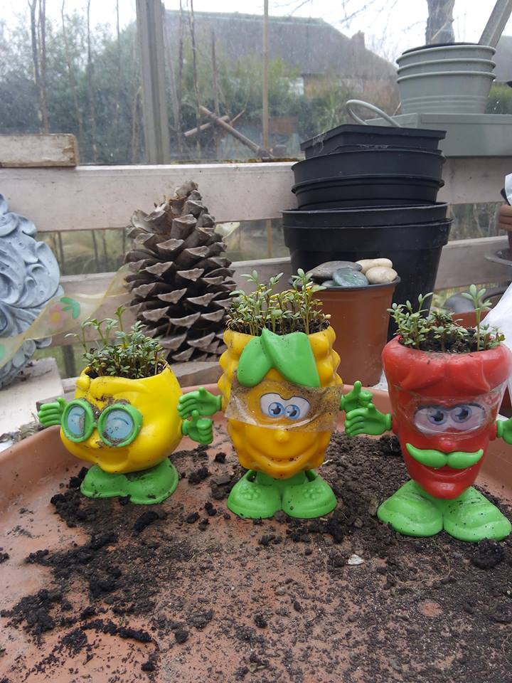 Our Shed Gardening Fun